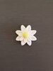 Daisy Cake Decorations